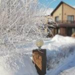 Территория Apart Hotel Линкер Парк в зимнее время в фотогалерее на сайте, фото 4